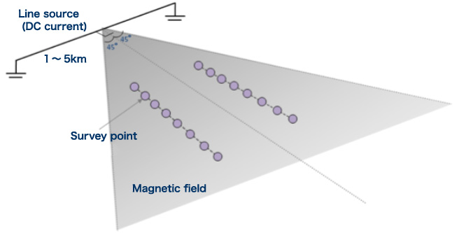 Surface magnetic survey